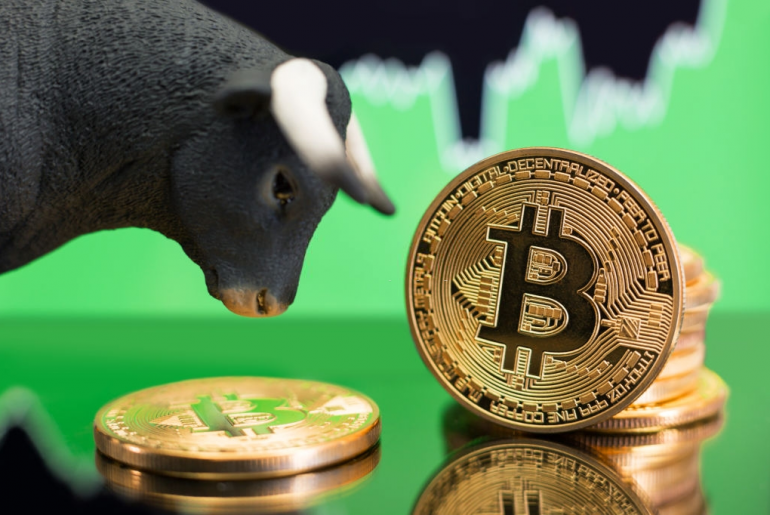 Crypto Trading Tips To Prepare You For The Upcoming Bull Market!
